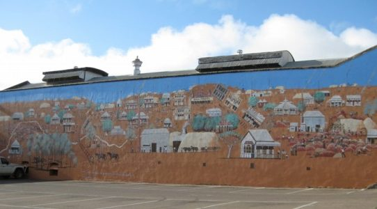 Charters Towers Mural Update